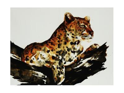 Safari Series I by Sydney Edmunds