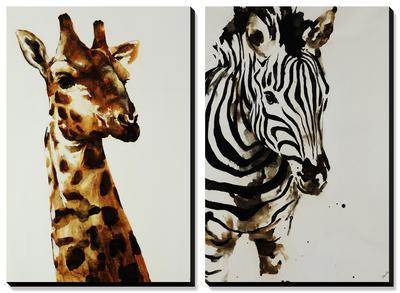 Safari Series