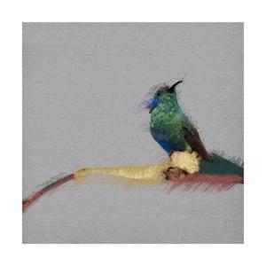 Birdy Birdy, 2019, by Sylver Bernat