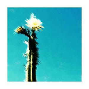 Flor de cactus, 2018, by Sylver Bernat