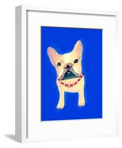 The Clever Dog Collection, 2019, by Sylver Bernat