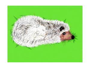 Wicked Spiky Hedgehog, 2019, by Sylver Bernat