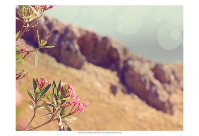 Flowers in Paradise I