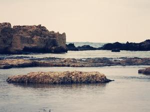 Mediterranean II by Sylvia Coomes
