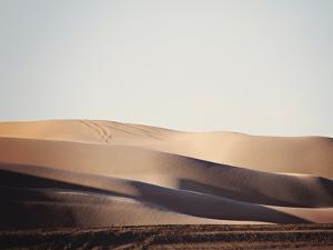 Sand Dunes III by Sylvia Coomes