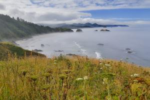 View of Cannon Beach with seastack with rising fog from Ecola State Park by Sylvia Gulin