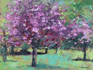 Blossom In The Park by Sylvia Paul