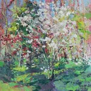 Blossom in the Wood by Sylvia Paul