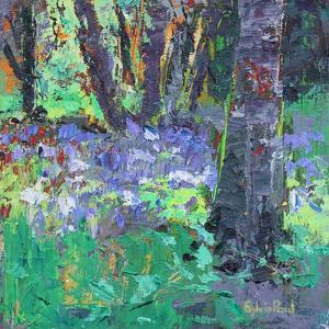 Bluebell Patch by Sylvia Paul