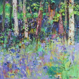 Bluebell Time by Sylvia Paul