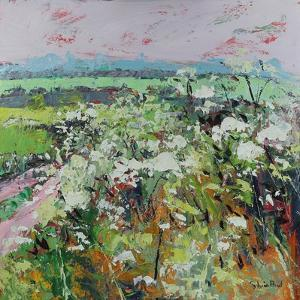 Footpath in Early summer by Sylvia Paul