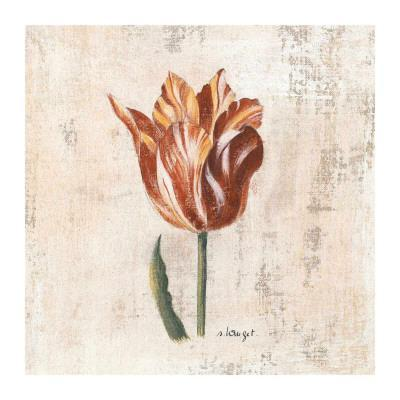 Tulipes I