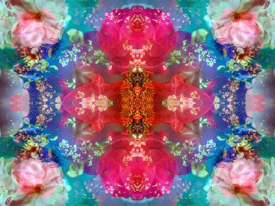 Symmetric Floral Montage with Red Blooming Rose Blossom, Cherry Blossoms and Spring Trees-Alaya Gadeh-Photographic Print