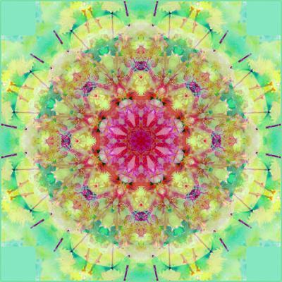 https://imgc.artprintimages.com/img/print/symmetric-floral-montage_u-l-q11zauz0.jpg?p=0