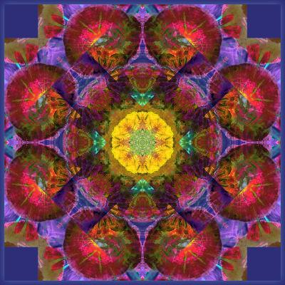 Symmetric Multicolor Layer Work of Blossoms-Alaya Gadeh-Photographic Print