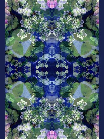 Symmetric Ornament from Flowers-Alaya Gadeh-Photographic Print