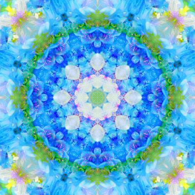 https://imgc.artprintimages.com/img/print/symmetric-ornament-mandala-from-flowers-in-blue-and-green-tones_u-l-q11zeqi0.jpg?p=0