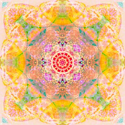 Symmetric Photographic Layer Work of Blossoms-Alaya Gadeh-Photographic Print