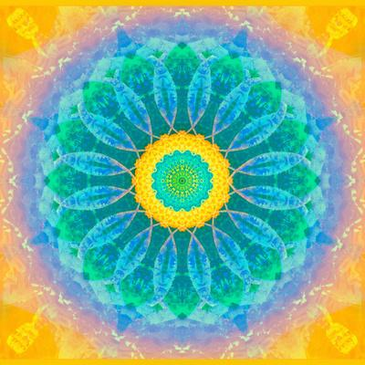 https://imgc.artprintimages.com/img/print/symmetrical-montage-of-flower-photographies_u-l-q11zg520.jpg?p=0