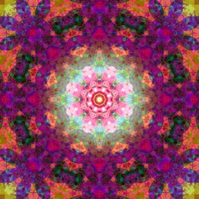https://imgc.artprintimages.com/img/print/symmetrical-ornament-of-flower-photographies_u-l-q11zg430.jpg?p=0