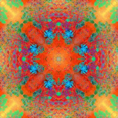 https://imgc.artprintimages.com/img/print/symmetrical-ornament-of-flower-photos_u-l-q11zg5x0.jpg?p=0