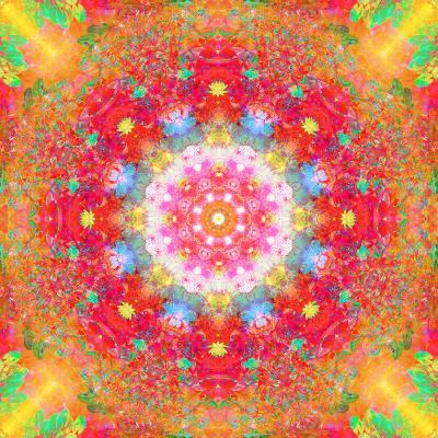 Symmetrical Ornament of Flower Photos-Alaya Gadeh-Photographic Print
