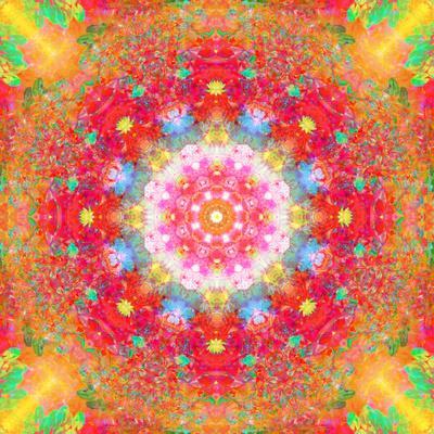https://imgc.artprintimages.com/img/print/symmetrical-ornament-of-flower-photos_u-l-q11zg8i0.jpg?p=0
