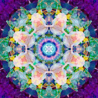https://imgc.artprintimages.com/img/print/symmetrical-photomontage-of-flower-photographies-a-mandala_u-l-q11zaik0.jpg?p=0