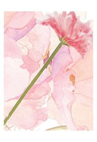 Sympathy Flower-Kimberly Allen-Art Print
