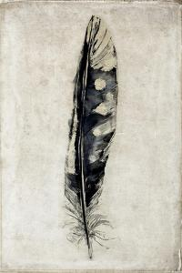 Feather 3 by Symposium Design