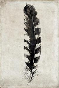 Feather by Symposium Design