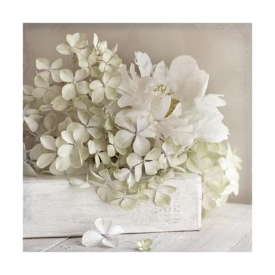 White Flower Book