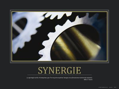 Synergie (French Translation)--Photo
