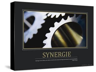 Synergie (German Translation)