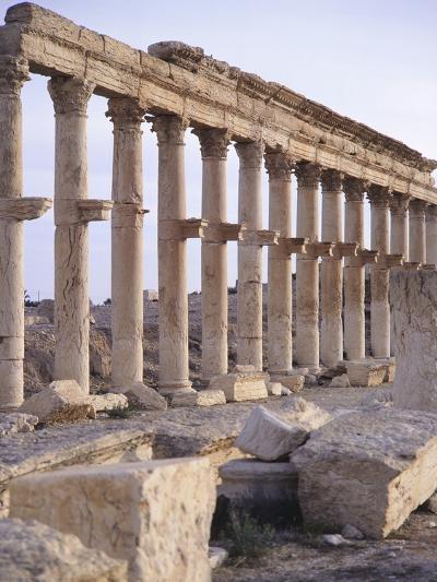 Syria, Palmyra, Colonnaded Street Near Roman Theater--Photographic Print