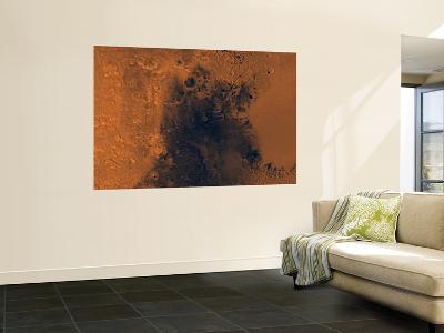 Syrtis Major Region of Mars--Wall Mural