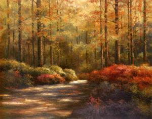 Autumn Trail by T. C. Chiu
