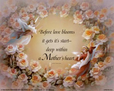 Before Love Blooms
