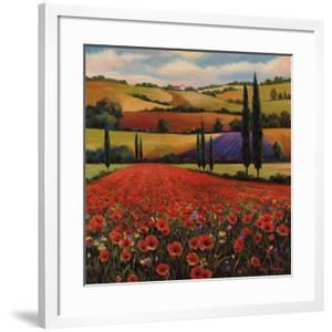 Fields of Poppies II by T^ C^ Chiu