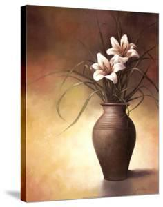 Flowering Orchid II by T. C. Chiu