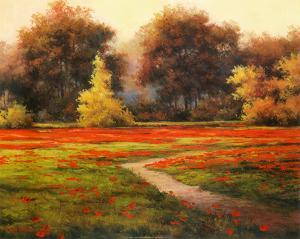 Poppy Meadows I by T. C. Chiu