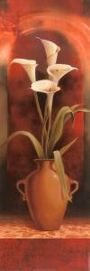 Potted White Calla Lily by T^ C^ Chiu