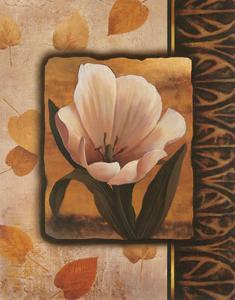 White Tulip by T^ C^ Chiu