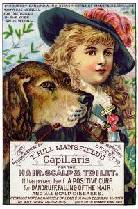 T. Hill Mansfield's Capillaris