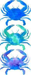 3 Crab Silhouette by T.J. Heiser