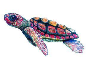 Baby Sea Turtle by T.J. Heiser