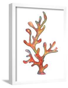 Coral 1 by T.J. Heiser