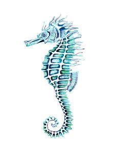 Crazy Seahorse 3 by T.J. Heiser