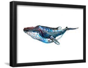 Whale 2 by T.J. Heiser