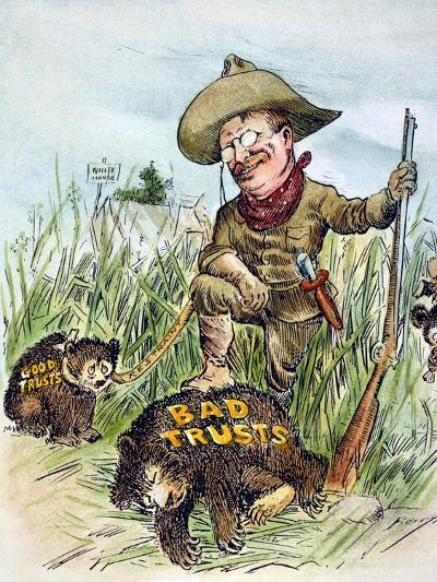 T. Roosevelt Cartoon, 1909-Clifford K. Berryman-Giclee Print